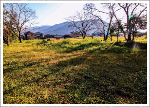 郡里廃寺跡 Kohzato haiji ato